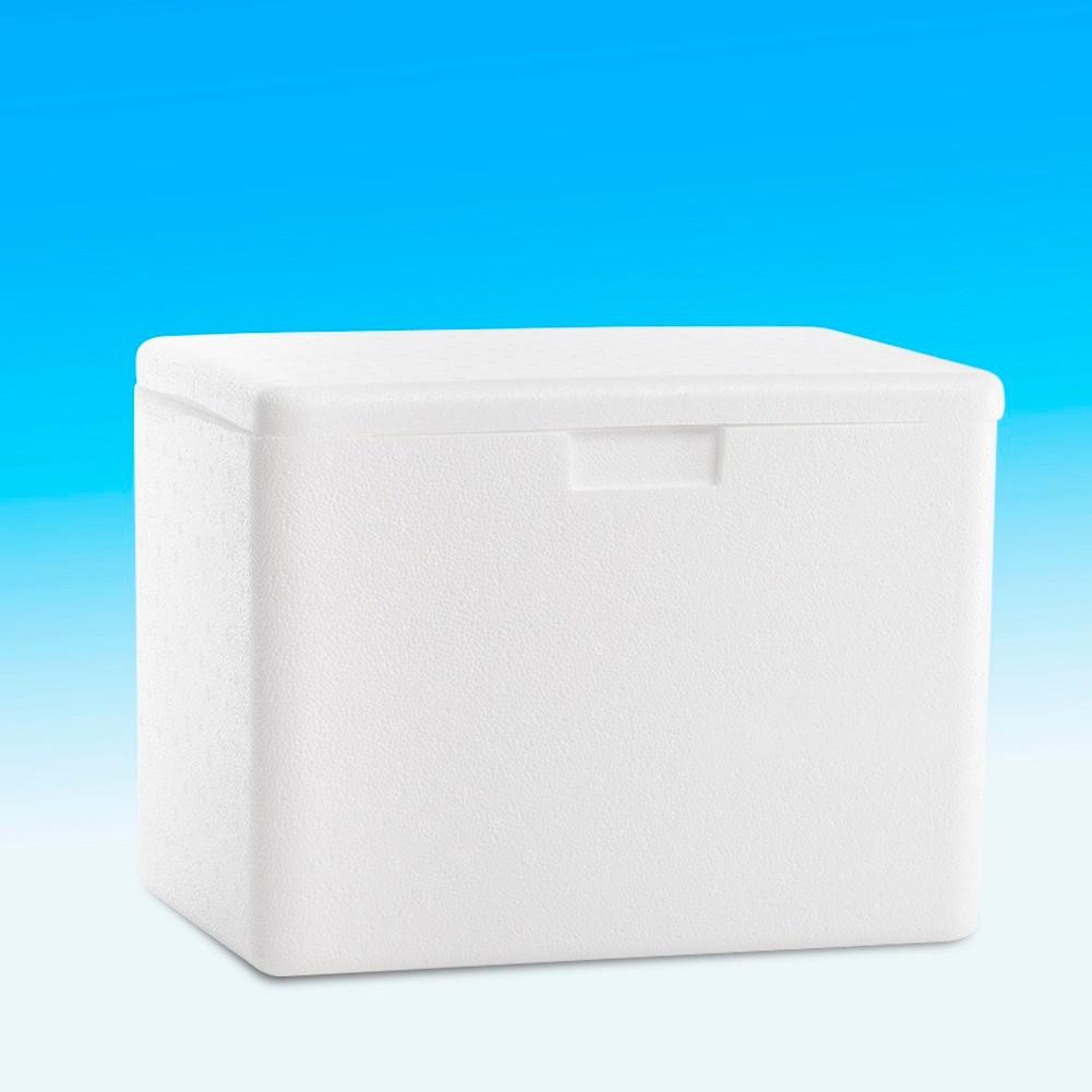 Conserv de gelo para uso domestico 10 lts