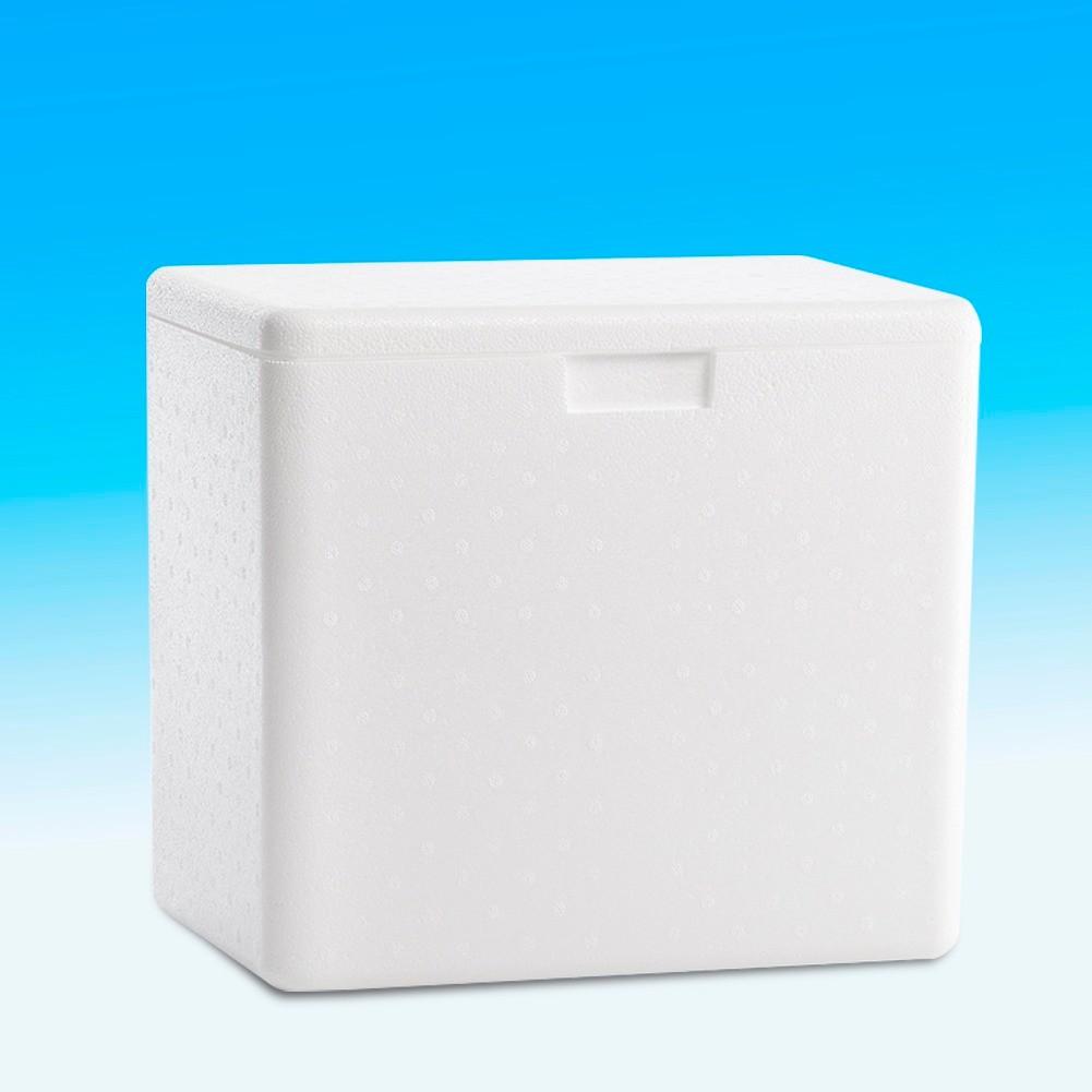 Conserv de gelo para uso domestico 12 lts