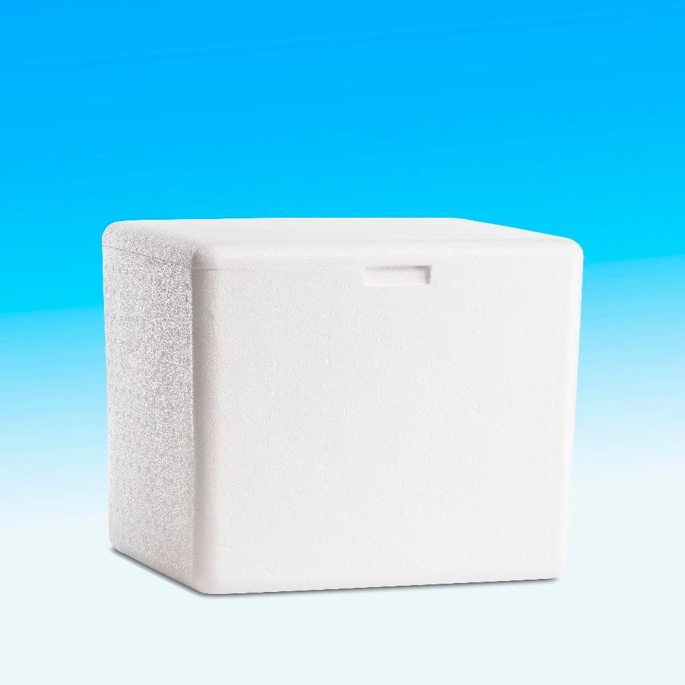 Conserv de gelo para uso domestico 37 lts