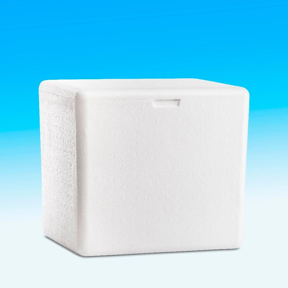 Conserv de gelo para uso domestico 44 lts